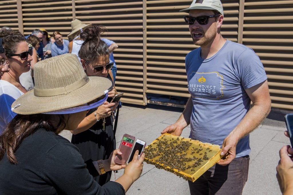 Chris Kirouac, Beeproject Apiaries