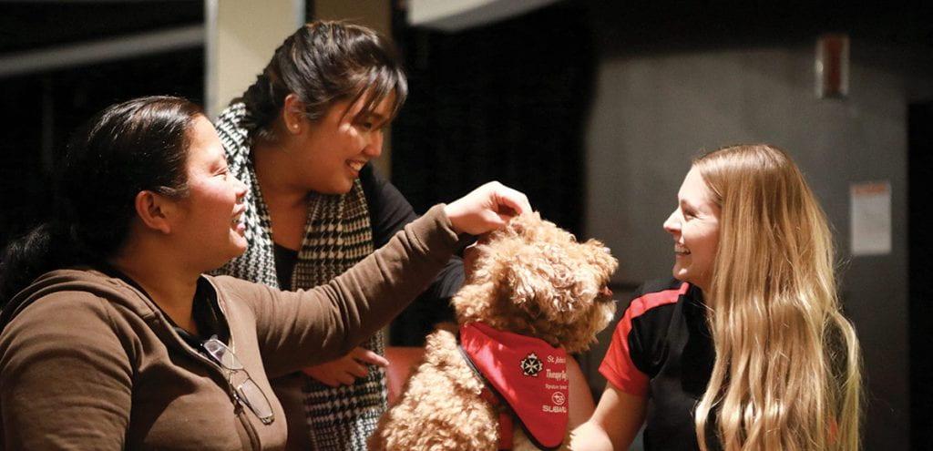 Girls petting dog