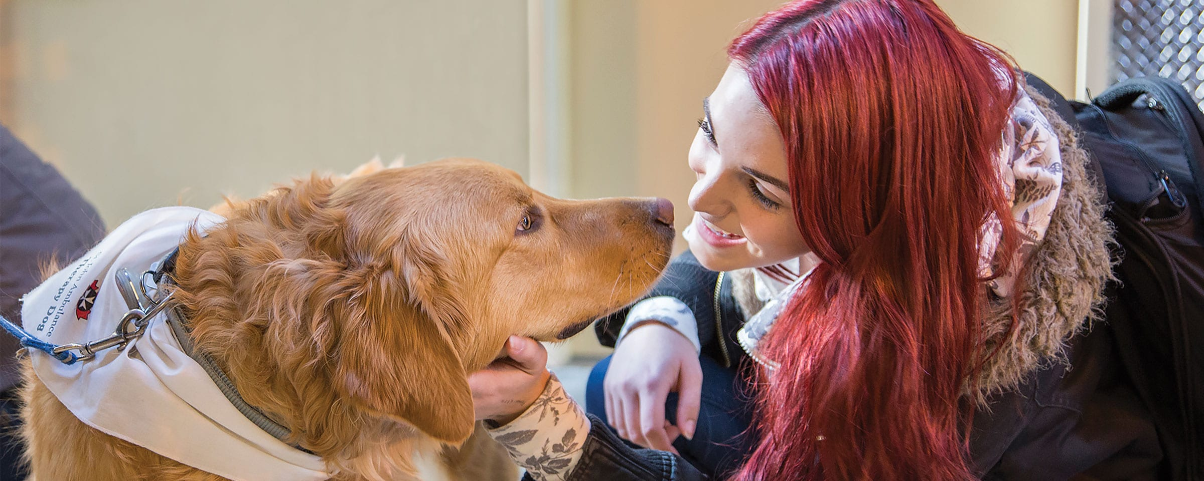 THRIVE week therapy dog
