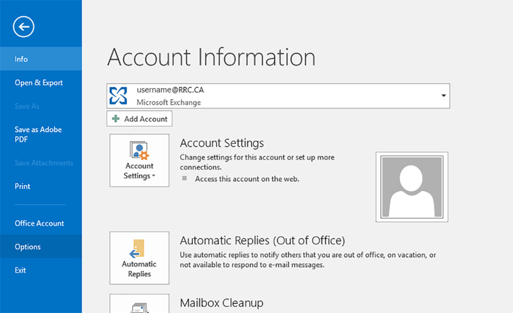 outlook_bsv_options