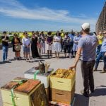 A large group stands on the rooftop of Red River College in front of three beehives for a presentation.