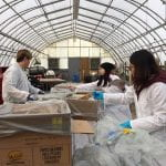 Students in protective white lab coats sort through trash during a trash audit.