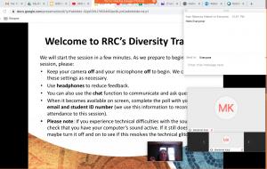 Screenshot of online Diversity Training