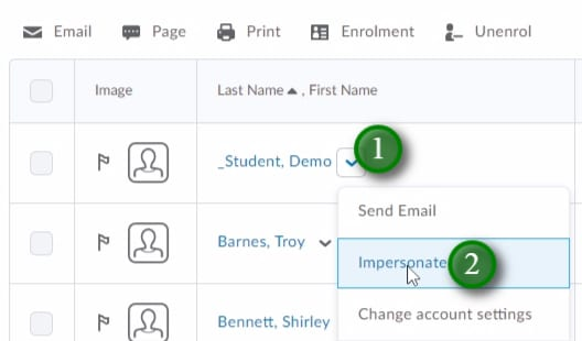 Impersonating a Demo Student in LEARN Classlist